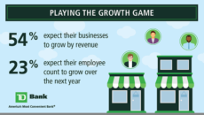 Small Business Owner Survey Infographic