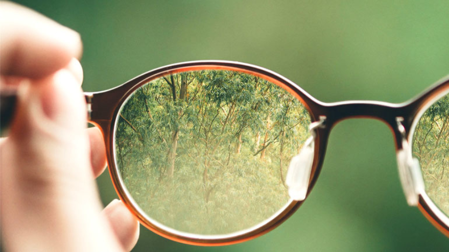 Holding eyeglasses looking into the forest
