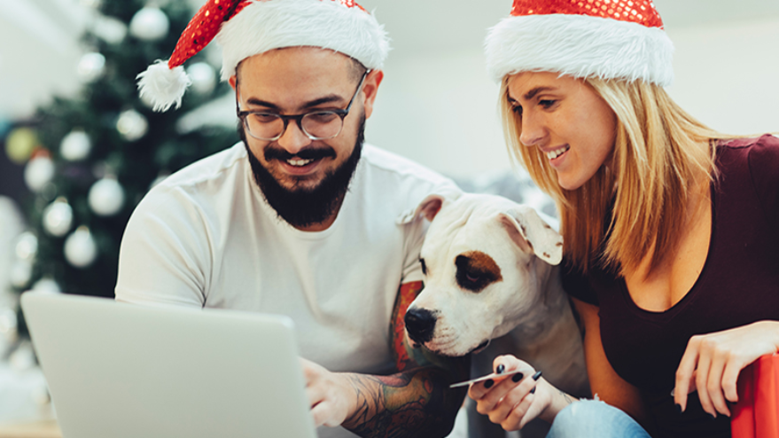 couple sitting looking at laptop with dog